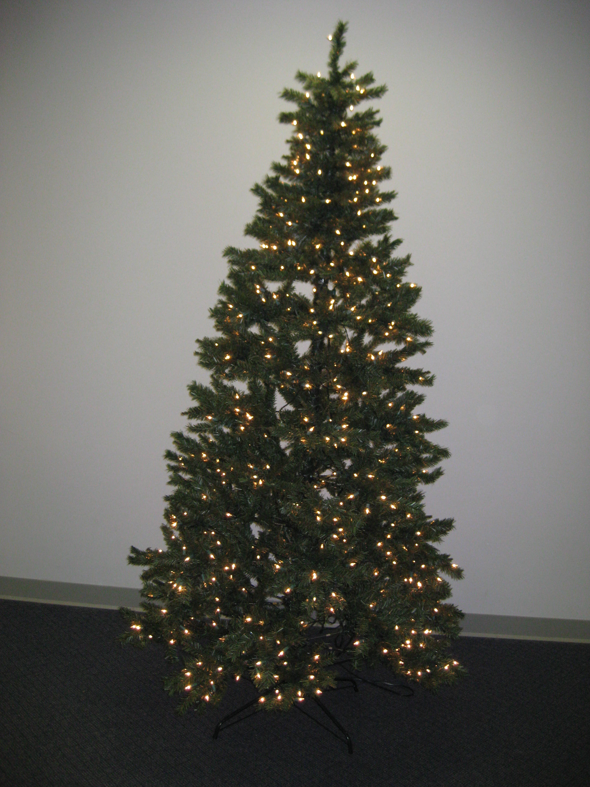 Truth In Medicine: Decorating the Wellness Forum Christmas Tree